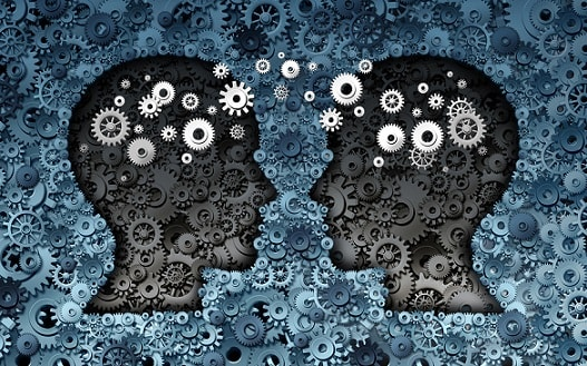 metacognition two brains